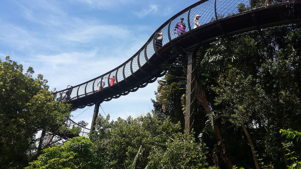 Best Things to do in Cape Town | Best Cities | Cape Town | Kirstenbosch National Botanical Garden