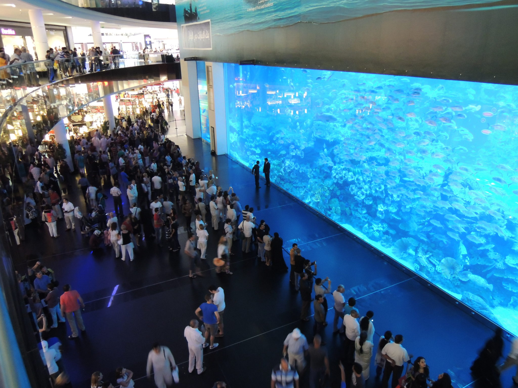 largest and best aquariums in the world 2017 top 10 aquariums world cities ranking bonus list
