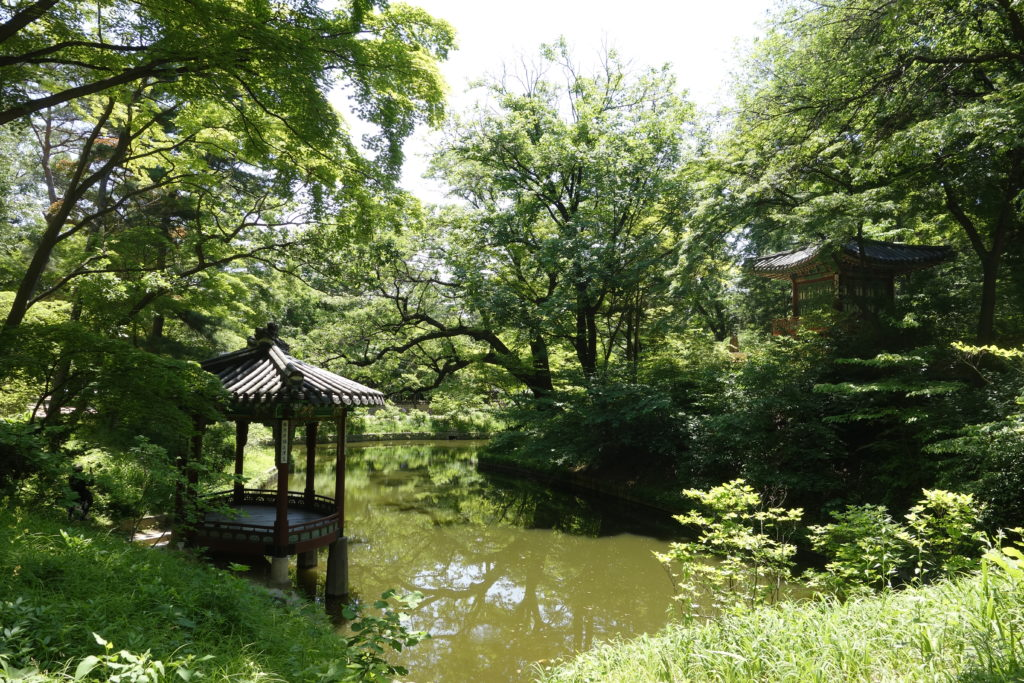 Best Things to do in Seoul | Best Cities | Seoul | CHANGDEOKGUNG PALACE (huge complex with immense SECRET GARDEN)