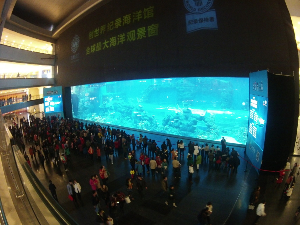 largest and best aquariums in the world 2019 top 10 aquariums